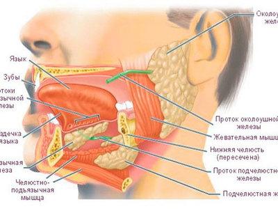Воспаление околоушной слюнной железы симптомы