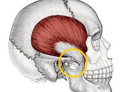 Что делать если больно открыть рот. Почему может болеть челюсть при жевании и когда это становится опасным